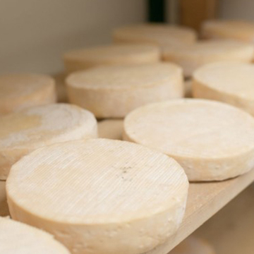 Fromages vers Toulouse